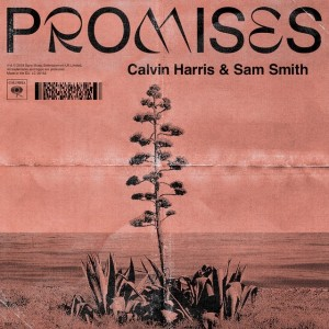 Calvin Harris/Sam Smith - Promises