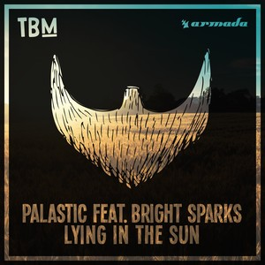 Palastic/Bright Sparks - Lying In The Sun