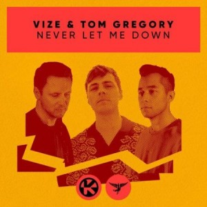 Vize/Tom Gregory - Never Let Me Down